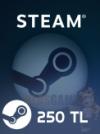 250 TL Steam Cüzdan