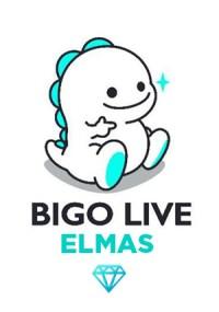 Bigo Live 29 Elmas