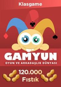 Gamyun 120000 Fıstık